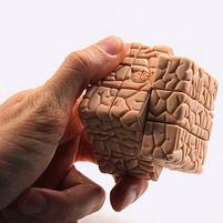 Твой мозг делает тебя тем, кто ты есть Kaja Nordengen