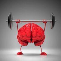 Процесс обучения и мозговая акробатика. Лора Сэндерс